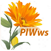 Punch Interactive Writing Web Suite